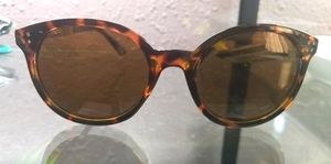 Foster Grant New Tortus Brown Shades